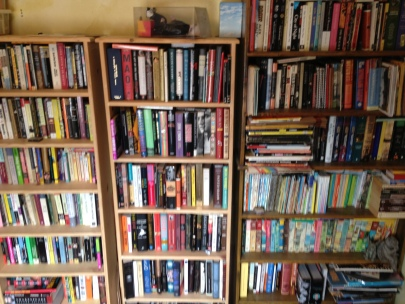 books, book, bookcases at my folks house wall