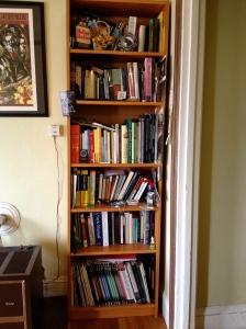 Sada's bookcase full shot
