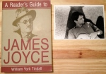 James Joyce, William York Tindall, Reader's Guide to James Joyce