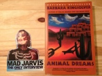Barbara Kingsolver, Animal Dreams, Jarvis Cocker