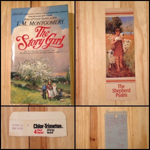The Story Girl, L.M. Montgomery, Anne of Green Gables