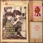 The Great Brain, The Great Brain at the Academy, John D. Fitzgerald