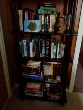 Christina's childhood bookcase