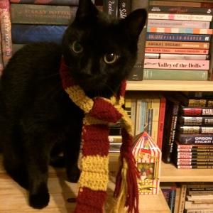 Hermione Granger, J. K. Rowling